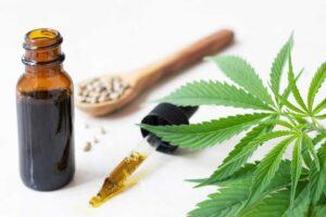 Screning Equipment Cannabis